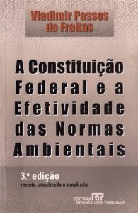 A Constituição Federal e a Efetividade das Normas Constitucionais